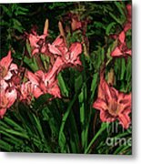 In The Pink Metal Print by Tom Prendergast