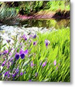 Iris And Water Metal Print by Linde Townsend