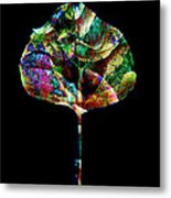 Jewel Tone Leaf Metal Print by Ann Powell