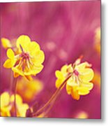Joyfulness Metal Print by Aimelle