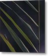 Just Grass Metal Print by Heiko Koehrer-Wagner