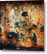 Just Rust Metal Print by Shane Rees