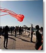 Kite Aloft Metal Print by Mike Reid