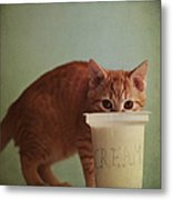 Kitten Eating From Big Pot Of  Cream Metal Print by By Julie Mcinnes
