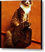 Kobe On Viga Metal Print by Susanne Still