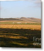 Landscape With Cows Grazing In The Field . 7d9966 Metal Print by Wingsdomain Art and Photography