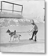 Lazy Skater Metal Print by Hulton Collection