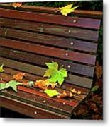 Leafs In Bench Metal Print by Carlos Caetano