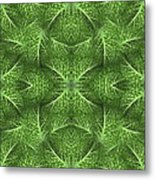 Lettuce Live Green  Metal Print by Sue Duda