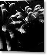 Licorice Sky Metal Print by DigiArt Diaries by Vicky B Fuller