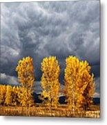Light And Darkness Metal Print by Evgeni Dinev