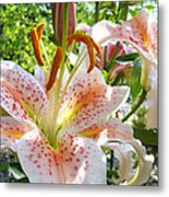Lily Flowers Floral Prints Photography Orange Lilies Metal Print by Baslee Troutman