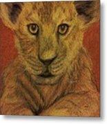 Lion Cub Metal Print by Christy Saunders Church