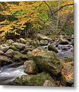 Little River I Metal Print by Charles Warren