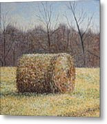 Lone Haybale Metal Print by Patsy Sharpe