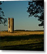Lonly Silo 5 Metal Print by Douglas Barnett