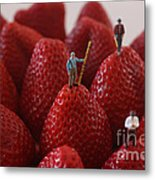 Looking For A Strawberry Hill Thrill Metal Print by David Bearden