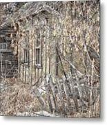 Lost Dog Metal Print by Jerry Cordeiro
