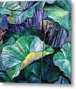 Lotus Pond Metal Print by Carol Mangano