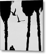 Love Birds Metal Print by Russell Styles