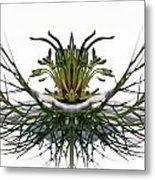 Love In A Mist Metal Print by Jean Noren