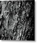Love Of Nature Metal Print by By Jake P Johnson
