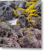 Low Tide Metal Print by Roger Mullenhour