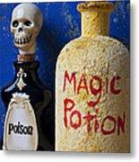 Magic Potion Metal Print by Garry Gay