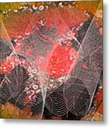 Magnification 4 Metal Print by Angelina Vick
