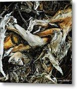 Mass Grave Metal Print by Donna Blackhall