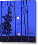 May Moon Through Birches Metal Print by Francine Frank