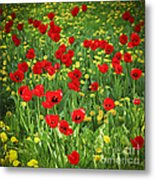 Meadow With Tulips Metal Print by Elena Elisseeva