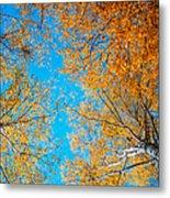 Meet In Heaven. Autumn Glory Metal Print by Jenny Rainbow