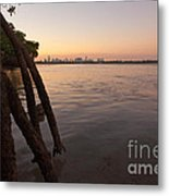 Miami And Mangroves Metal Print by Matt Tilghman