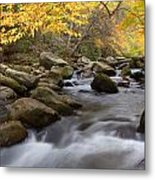 Mid Stream Metal Print by Charles Warren
