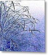 Misty Blue Metal Print by Will Borden