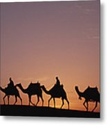 Modern Egyptians Riding Domesticated Metal Print by Gerry Ellis