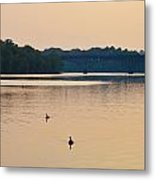 Morning Along The Schuylkill River Metal Print by Bill Cannon