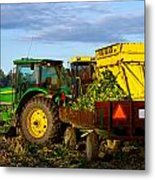 Morning Harvest Metal Print by Tim Fitzwater