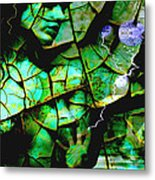 Mother Earth Metal Print by Yvon van der Wijk