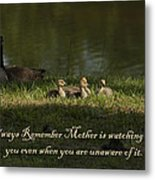 Mother's Watchful Eye Metal Print by Kathy Clark