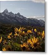 Mountain Flowers Metal Print by Charles Warren