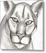 Mountain Lion Metal Print by Rick Hill
