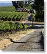Napa Farmhouse Metal Print by Dee  Savage