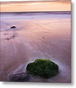 New Day Metal Print by Martin Williams