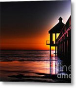 Nightshade Metal Print by Pixel Perfect by Michael Moore