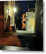 No Alley Cats Tonight Metal Print by Jan Amiss Photography