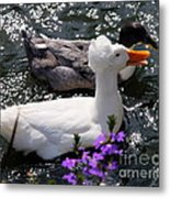 Oh Happy Day Metal Print by Karen Wiles