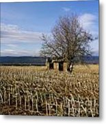 Old Hut Isolated In A Field. Auvergne. France Metal Print by Bernard Jaubert