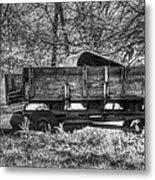 Old Wagon Metal Print by Lisa Moore